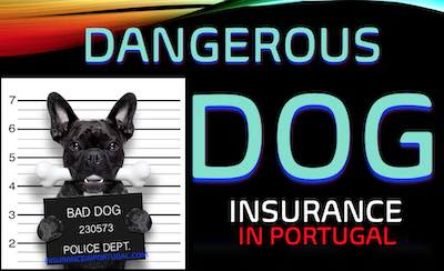 Dangerous dog and public liability insurance in Portugal