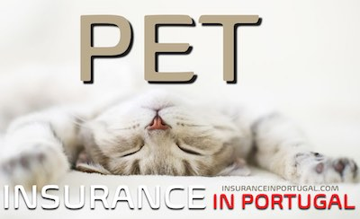 Get a quote for pet insurance in Portugal from the best Pet Insurance company in Europe.